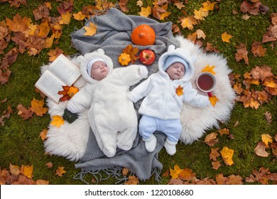 cute little twins relaxing in autumn park