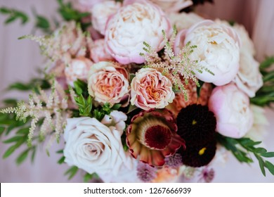 Cute and lovely peony. many layered petals. Bunch pale pink peonies flowers light gray background.
