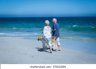 Cute mature couple holding hands walking the dog on the beach