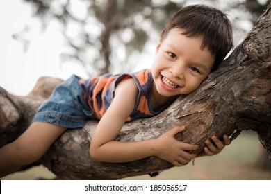 Cute mixed race Asian Caucasian boy happily lying in a tree hugging a big branch