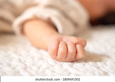Cute newborn baby hand with a soft atmosphere