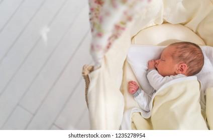 Cute newborn sleeping baby and copy space