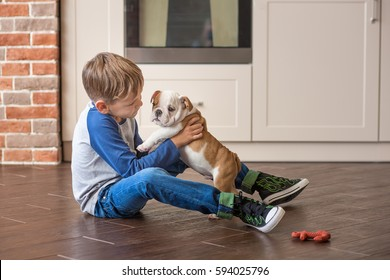 Cute nice little puppy english bull dog with handsome boy on tile close to stylish brick wall.Red white colour puppy french american bully with friend wearing jeans keds shirt hanging and smiling.