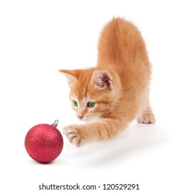 Cute orange kitten playing with a red Christmas ball ornament on a white background.