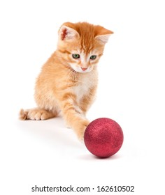 Cute orange kitten playing with a red Christmas ball ornament isolated on a white background.