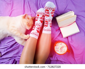 Cute photo of woman's feet with christmas slippers, top view point. Cozy, comfy, soft, next white fluffy cat, comfortable and quiet.