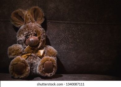 cute plush toy bunny sits on a sofa in a dark illuminated beam of light
