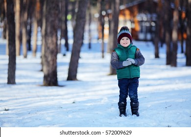 Cute preschooler boy walk in the snowy forest, play, laugh, run and has fun, breeze frosty fresh air. Kids fashion, family leisure and free time. Small boy looking for a squirrel on pine tree