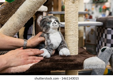 Cute products inside a pet superstore. A close-up view on a person's hands inside a pet shop, feeling the softness of a stuffed cat by a small animal scratch pole, with copy-space on the right.