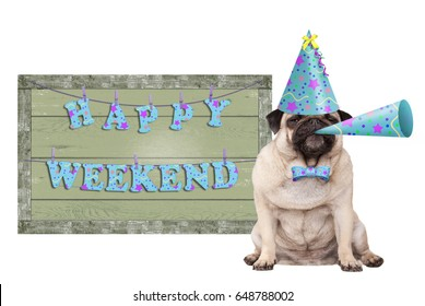 cute pug puppy dog with blue party hat and horn and green wooden sign with text happy weekend, isolated on white background