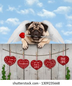 cute pug puppy dog with cupid angel wings and arrow, hanging on fence with wooden hearts with love text, blue sky