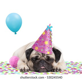 cute pug puppy dog with pink party hat lying down on confetti, sticking out tongue, tired of partying, on white background