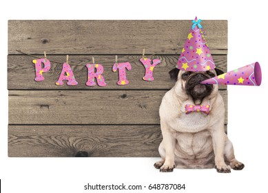 cute pug puppy dog with pink party hat and horn and wooden sign with text party, isolated on white background