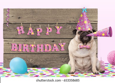 cute pug puppy dog with pink party hat and horn and wooden sign with text happy birthday, on light pink background