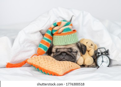 Cute Pug puppy hugs favorite toy bear and sleeps near alarm clock on a  pillow under white blanket at home