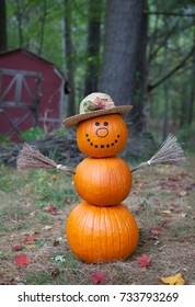 Cute pumpkin man in the woods