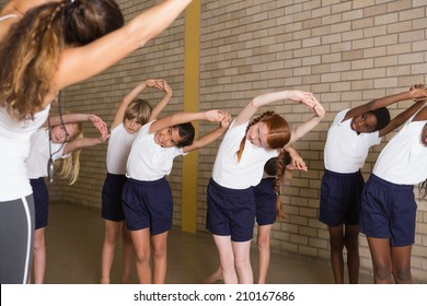 Cute pupils warming up in PE uniform at the elementary school