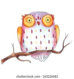 Cute purple and orange owl on a tree branch painted on white isolated background