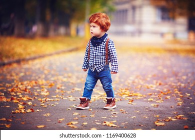 cute redhead toddler baby boy walking among fallen leaves on autumn street