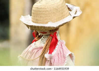 Cute scarecrow in a dress