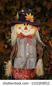 Cute scarecrow with leaves falling