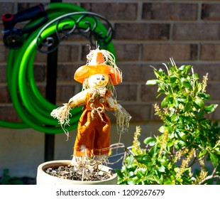 cute scarecrow, pumpkin jack o lantern and flowers for fall seasons
