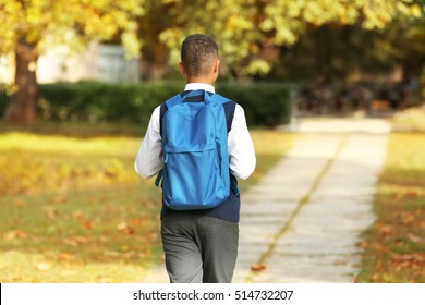 Cute schoolboy walking along pathway in park