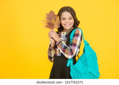 Cute schoolgirl going to school. Small schoolgirl concept. Little kid. Schoolgirl with backpack and fallen leaves. Happy schooling. Great back to school deals on everything you need to learn in style.