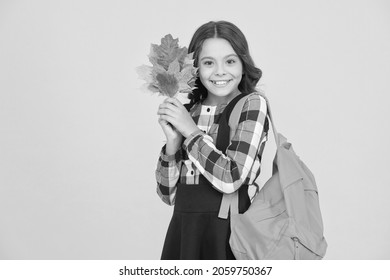 Cute schoolgirl going to school. Small schoolgirl concept. Little kid. Schoolgirl with backpack and fallen leaves. Happy schooling. Great back to school deals on everything you need to learn in style