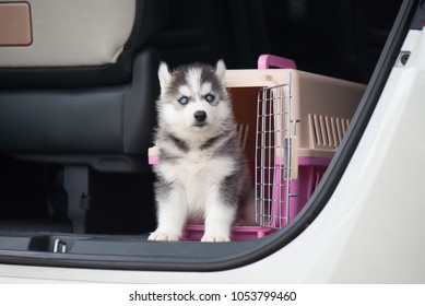 Siberian Husky Pet Dog Round Wood ID Tag Luggage Card Suitcase Carry-On