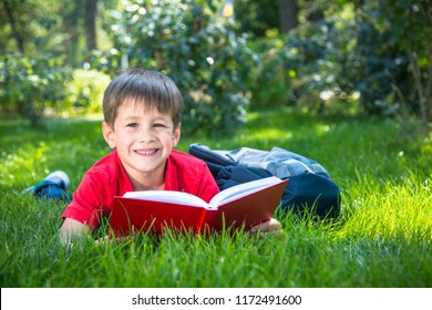 Cute smiling child boy read book in summer park in the grass.