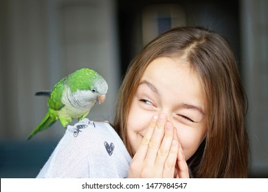 Cute smiling girl playing with her pet green Monk Parakeet parrot. who is sitting on her shoulder. Quaker parrot bird owner. Exotic pet.