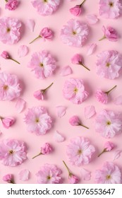 Cute spring sakura blossom pattern. Flower floral pattern with cherry flowers petals and buds on pink pastel background flat lay top view
