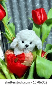 Cute stuffed lamb sits in a bed of tulips.  A heart shaped pillow is held in its arms.  Red tulips against a ridged tin building.