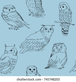 Cute stylish seamless pattern with a owls on a blue background