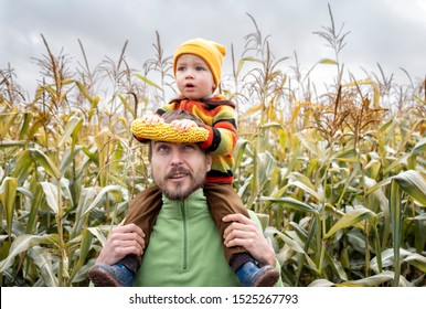 Cute surprised child in colorful sweater sitting on his father shoulders with ripe corn cob on yellow autumn corn field. Fall season concept.