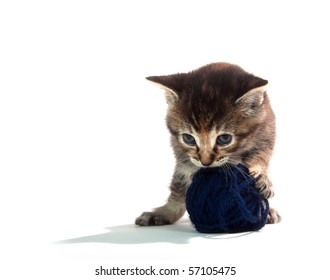 Cute tabby kitten playing with ball of blue yarn on white background