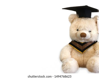 Cute teddy bear graduation on a white background - Shutterstock ID 1494768623