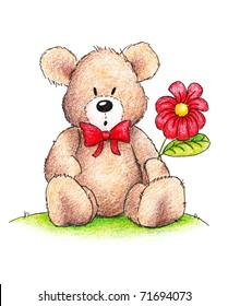 Cute teddy bear with red daisy on white background