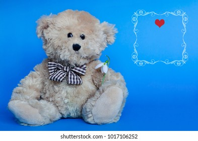 Cute teddy bear and red hearts for Valentine's Day