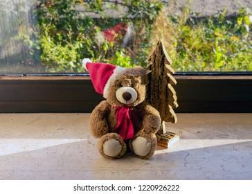 cute teddy with santa hat on the windowsill