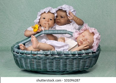 Cute Three Baby with Mop Hat sitting in the Basket