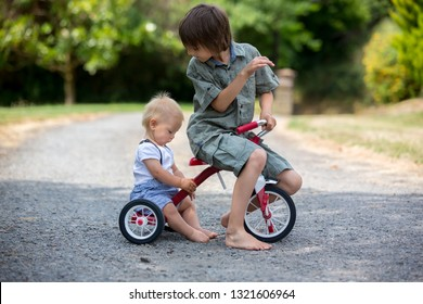 Cute toddler boy and his older brother, playing with tricycle in backyard, summertime