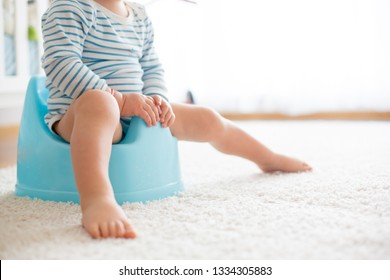 Potty Images, Stock Photos & Vectors | Shutterstock