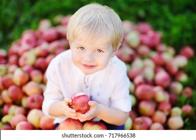 Cute toddler boy sitting on heap of apples and eating ripe apple in domestic garden. Harvest time