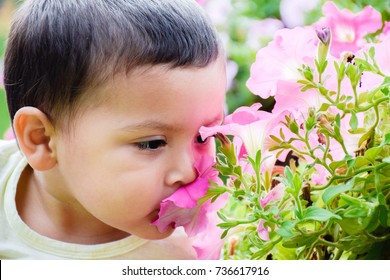 Cute toddler boy smelling the flower