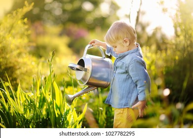 Cute toddler boy watering plants in the garden at summer sunny day. Mommy little helper