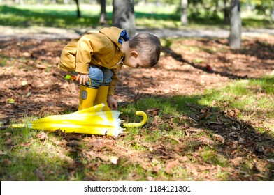 Cute toddler boy in yellow rubber boots, yellow raincoat holding a yellow lemon umbrella in an autumn park