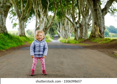 Cute toddler girl walking on a rainy day in the beginning of The Dark Hedges. Northern Ireland. Happy child visiting with parents and family famous Irish tree avenue