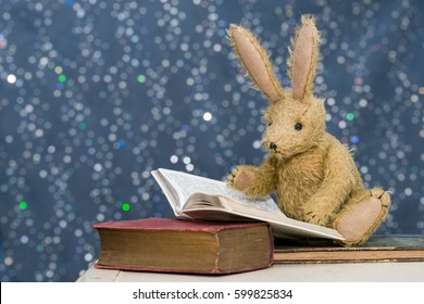 Cute toy rabbit with long ears reading books. Blue bokeh background. Story time, child's reading, learning concept